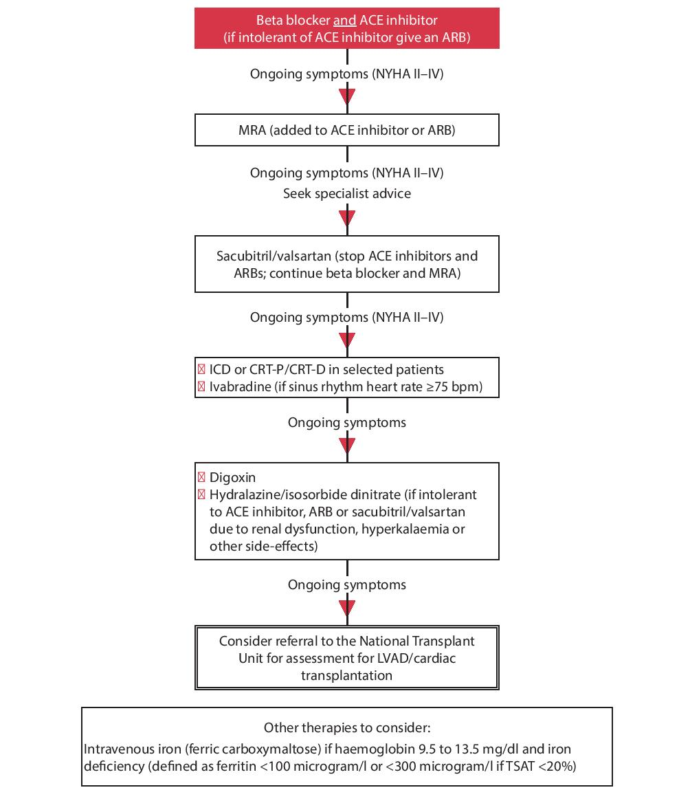 Algorithm for pharmacotherapy and device therapy in patients with HF-REF, NYHA class II–IV