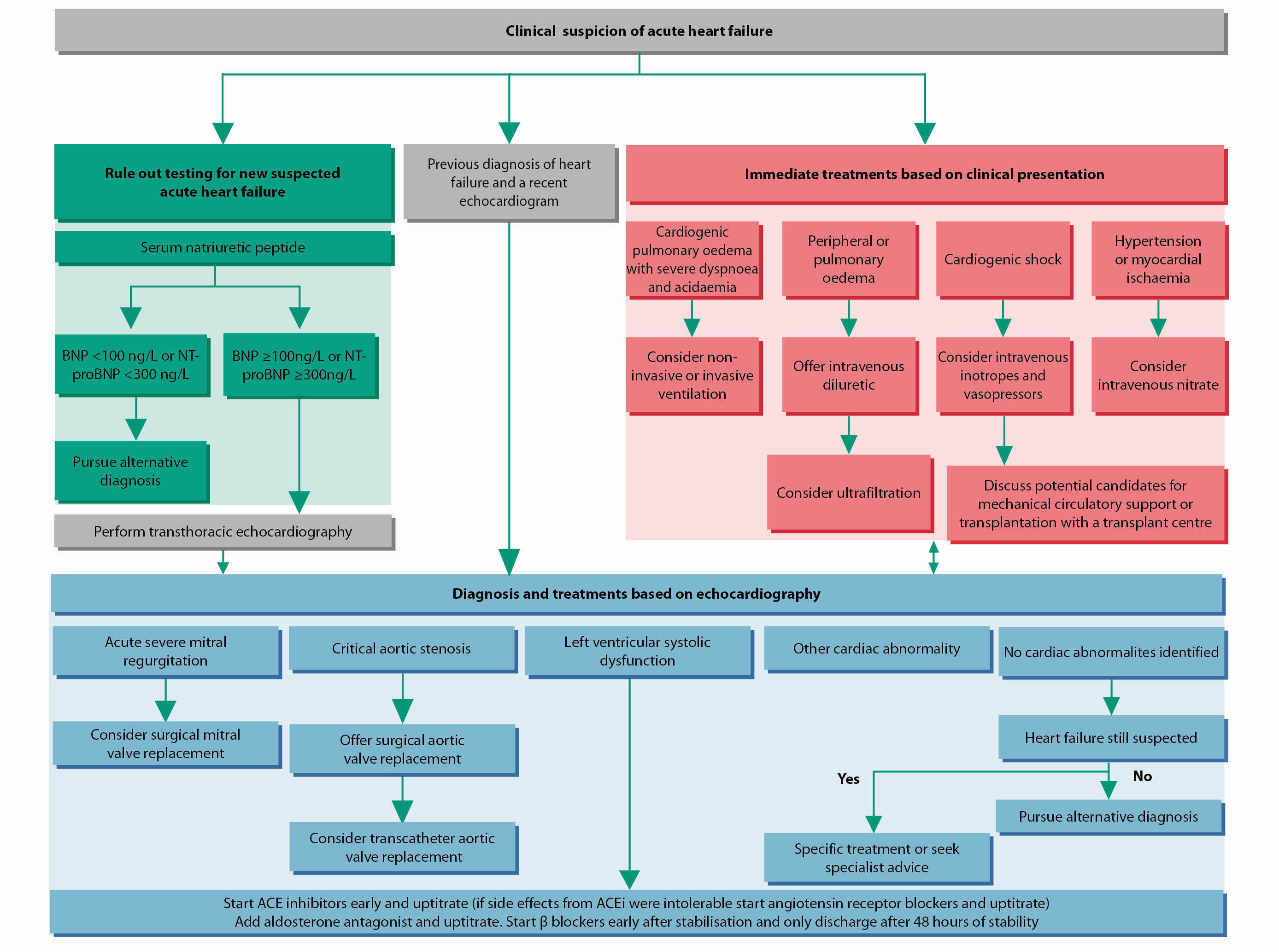 Diagnostic and treatment algorithm for clinical suspicion of acute heart failure