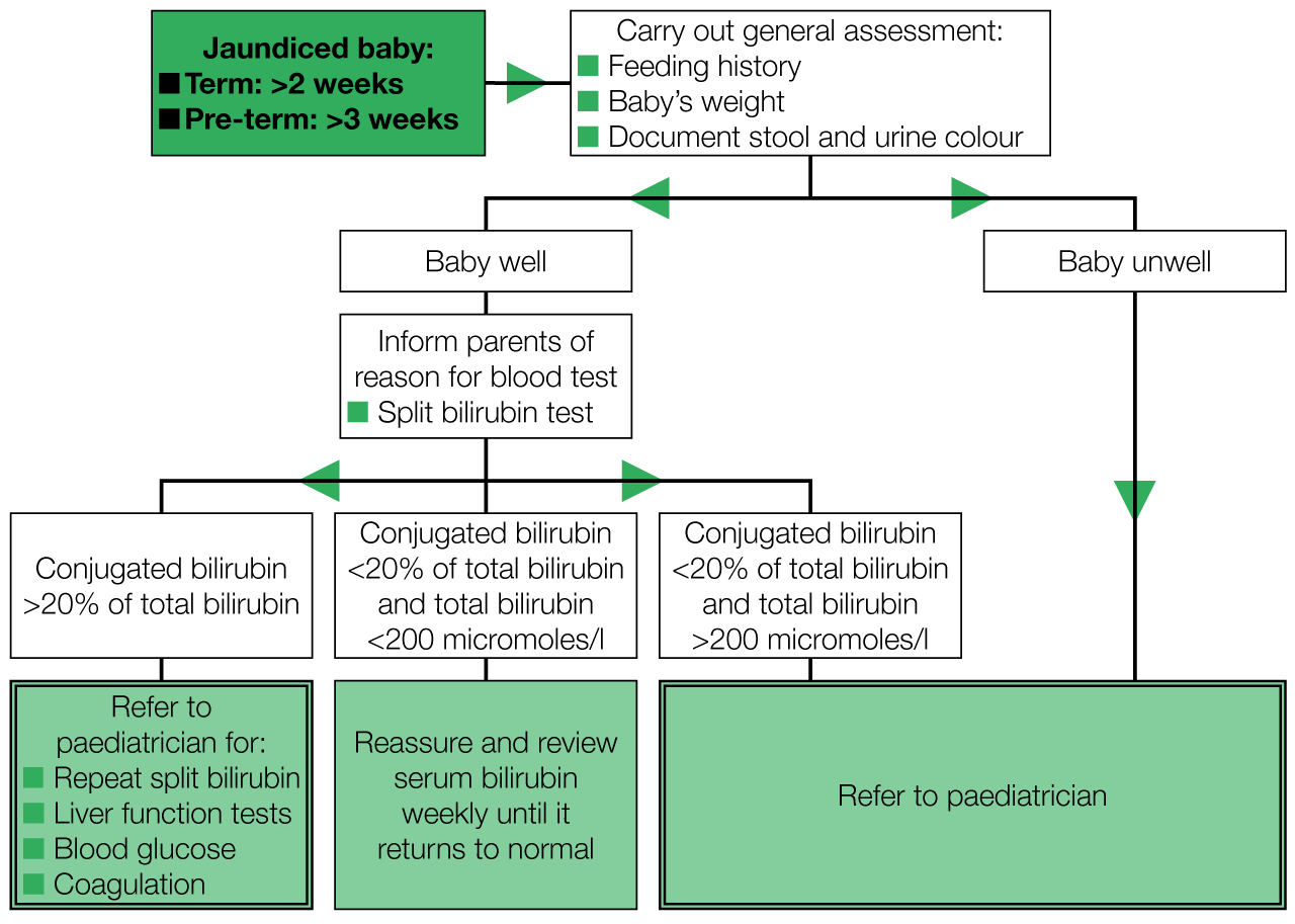 Cldf Liver Disease In Infants Guideline Independent Professional