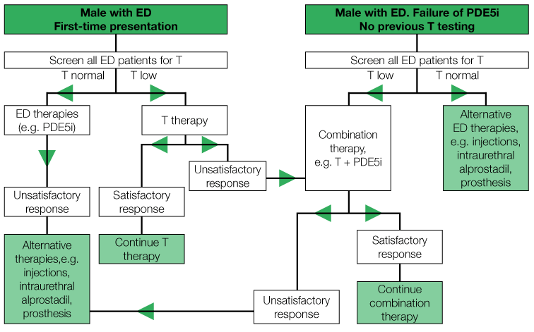Algorithm for androgen therapy in a man presenting with ED
