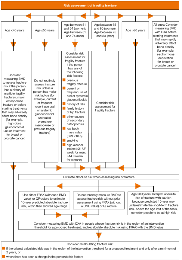 Algorithm for assessing fragility fracture