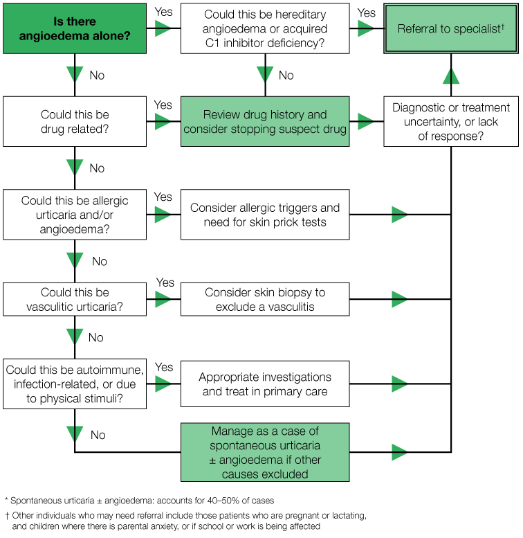 Algorithm for diagnosis of chronic urticaria and/or angioedema
