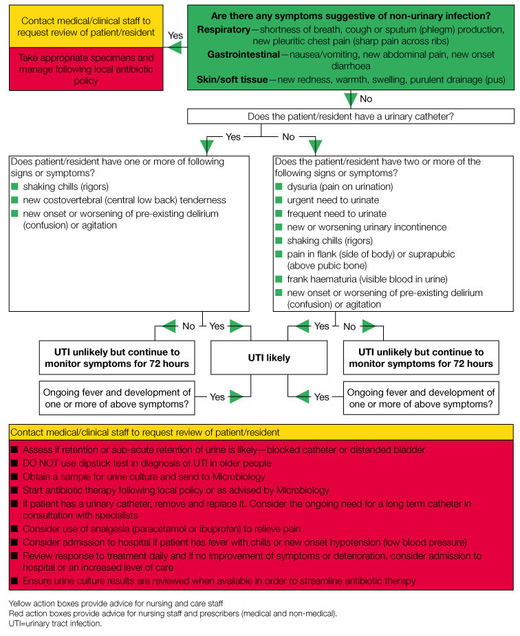 decision aid flowchart for the diagnosis and management of suspected urinary tract infection uti) in older people