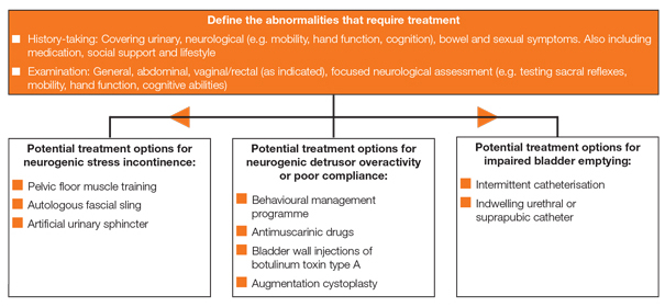 Figure 3: Neurogenic lower urinary tract dysfunction: treatment of specific problems
