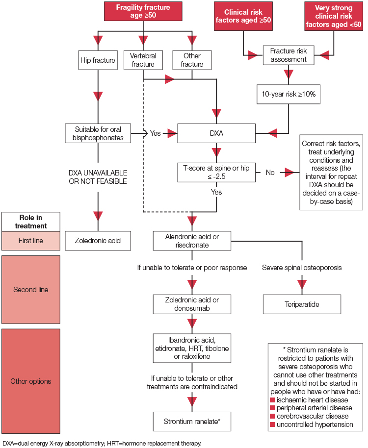Pathway from risk factors to pharmacological treatment selection in postmenopausal women