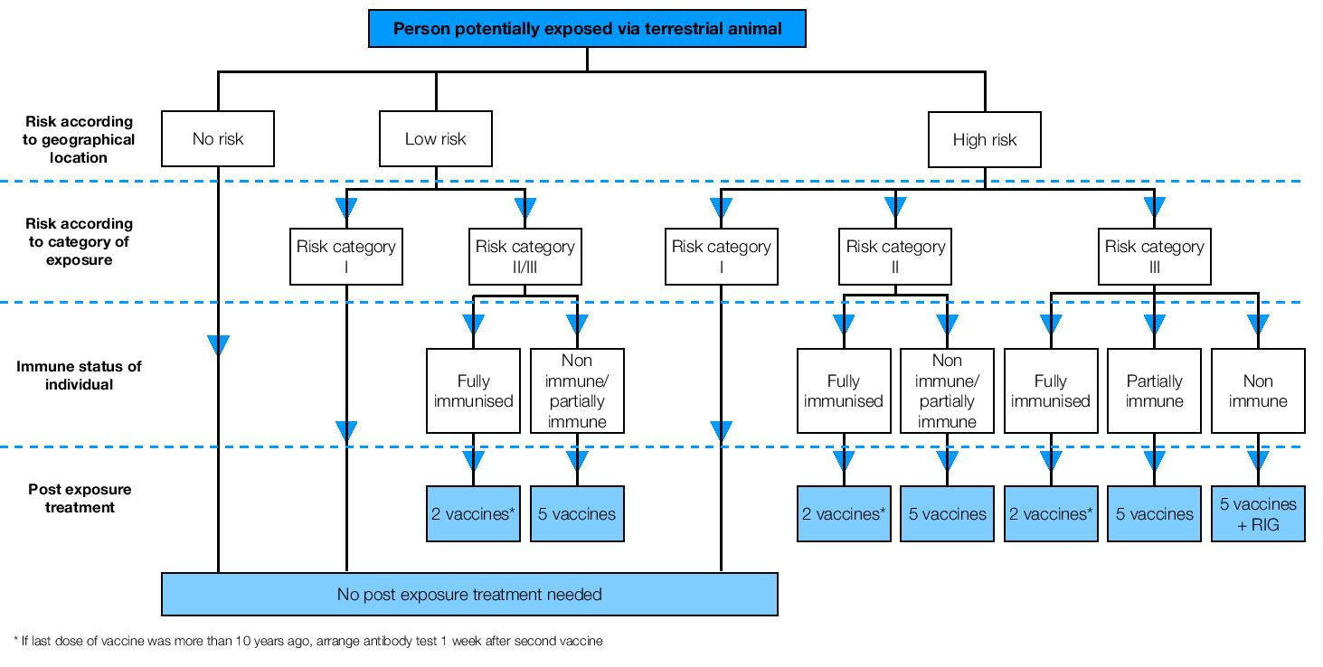 Summary of Risk Assessment Treatment following exposure to terrestrial animals