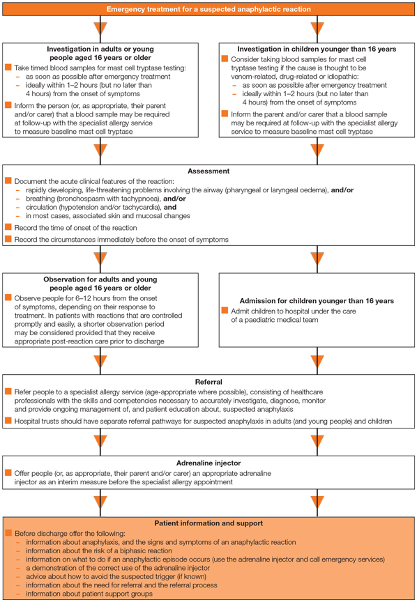 Anaphylaxis care pathway algorithm